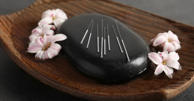 Outstanding Websites For Acupuncturists